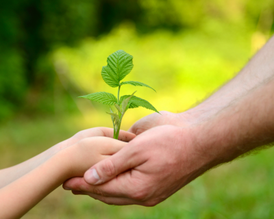 Vater hält die Hände vom Sohn und aus der Zusammenarbeit entsteht eine neue Pflanze Kunden Karma Positionierungscoach Jasmin Grigutsch